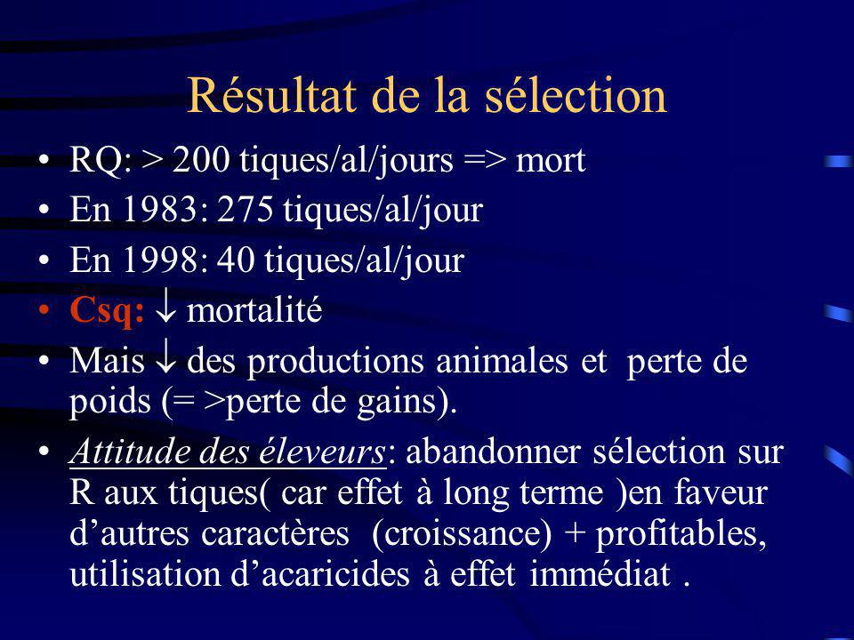 Résultat de la sélection RQ: > 200 tiques/al/jours => mort En 1983: 275 tiques/al/jour En 1998: 40 tiques/al/jour Csq: mortalité Mais des productions