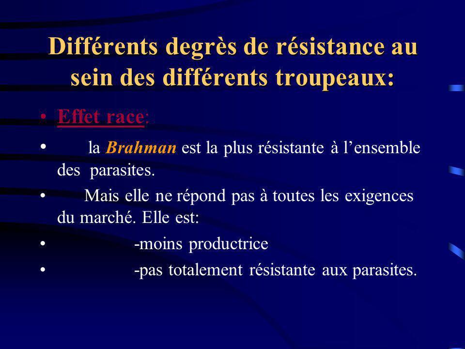 Différents degrès de résistance au sein des différents troupeaux: Effet race: la Brahman est la plus résistante à lensemble des parasites. Mais elle n