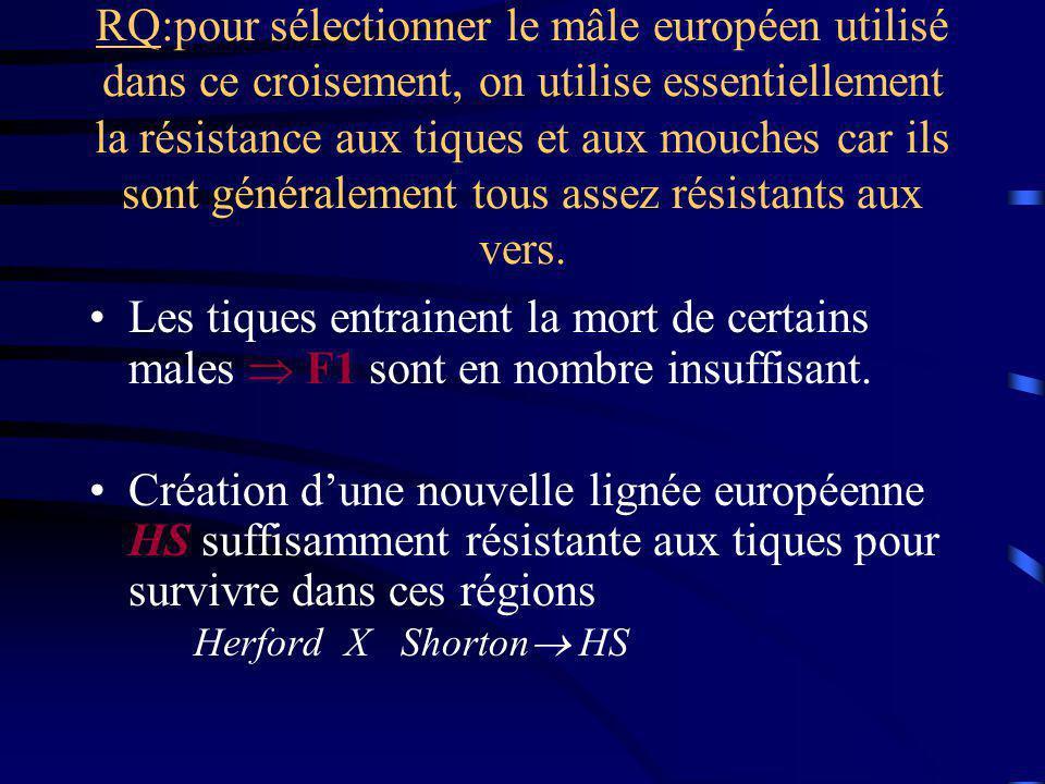 RQ:pour sélectionner le mâle européen utilisé dans ce croisement, on utilise essentiellement la résistance aux tiques et aux mouches car ils sont géné