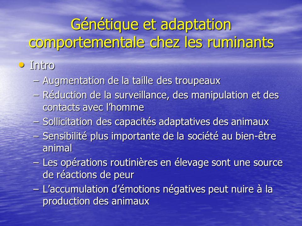 Génétique et adaptation comportementale chez les ruminants Intro Intro –Augmentation de la taille des troupeaux –Réduction de la surveillance, des man