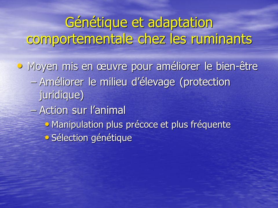 Génétique et adaptation comportementale chez les ruminants Moyen mis en œuvre pour améliorer le bien-être Moyen mis en œuvre pour améliorer le bien-êt
