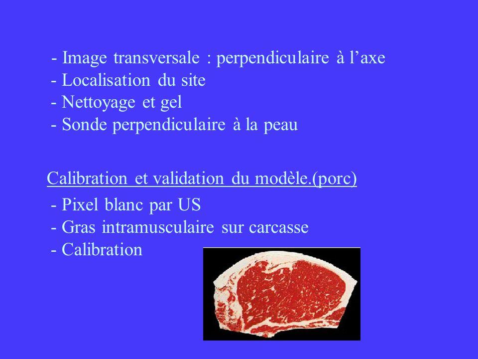 - Image transversale : perpendiculaire à laxe - Localisation du site - Nettoyage et gel - Sonde perpendiculaire à la peau Calibration et validation du modèle.(porc) - Pixel blanc par US - Gras intramusculaire sur carcasse - Calibration