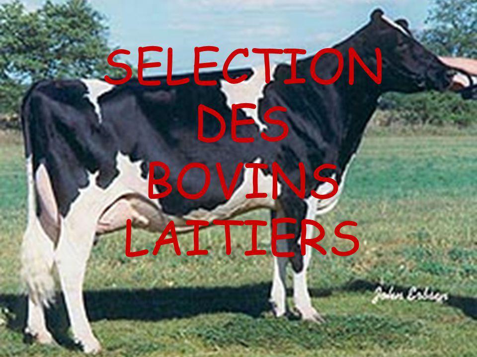 INFORMATIONS DISPONIBLES POUR CHOISIR LE TAUREAU INSEMINATION 1)Identification des animaux avec SANITEL 2)Données de production 3)Classification morphologique