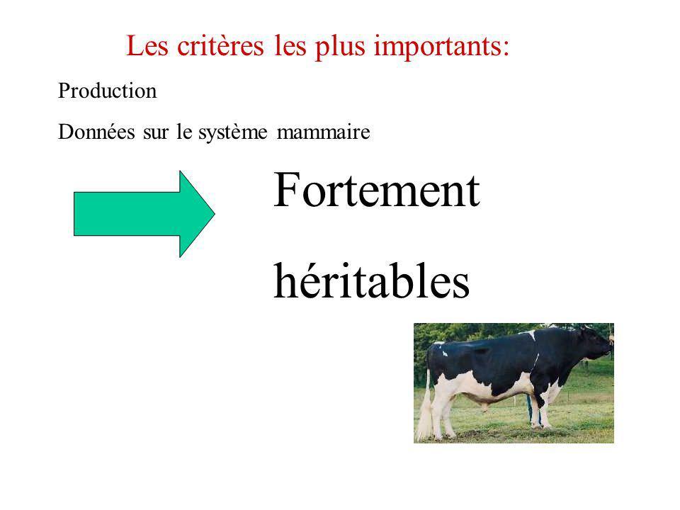 Les critères les plus importants: Production Données sur le système mammaire Fortement héritables