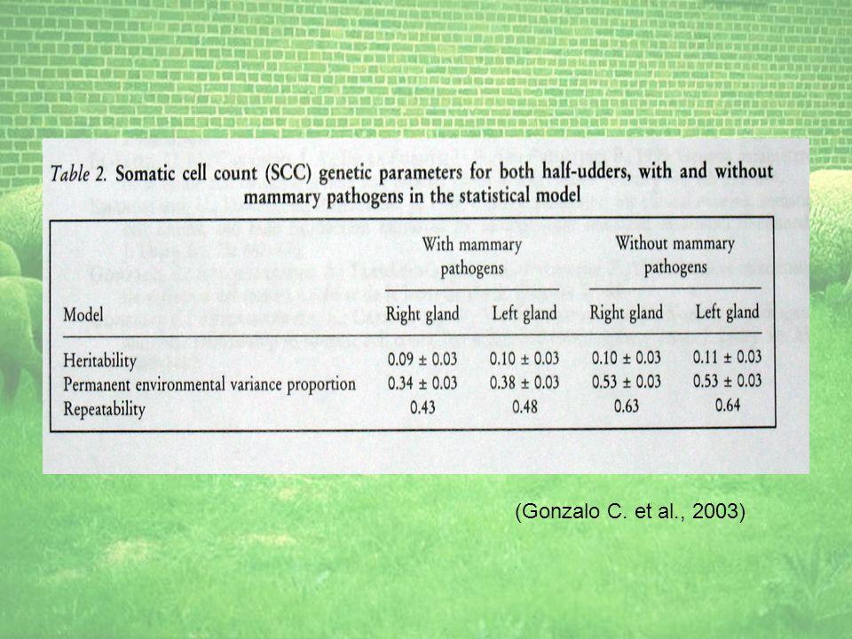 (Gonzalo C. et al., 2003)