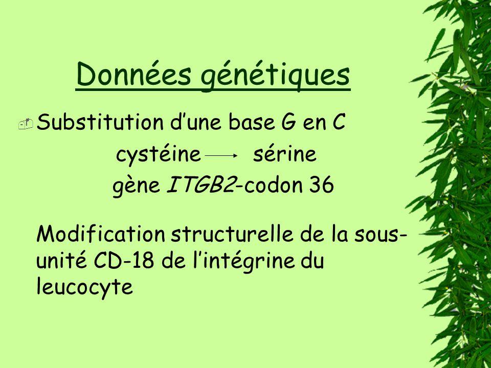 Données génétiques Substitution dune base G en C cystéine sérine gène ITGB2-codon 36 Modification structurelle de la sous- unité CD-18 de lintégrine du leucocyte