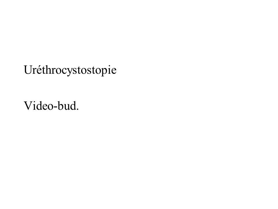 Uréthrocystostopie Video-bud.