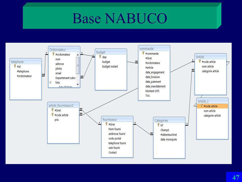 Base NABUCO 46 CS proposé par un de projets ISF 08 Simulation du système universitaire de comptabilité publique NABUCO réel nest pas une BD Doù beaucoup de problèmes