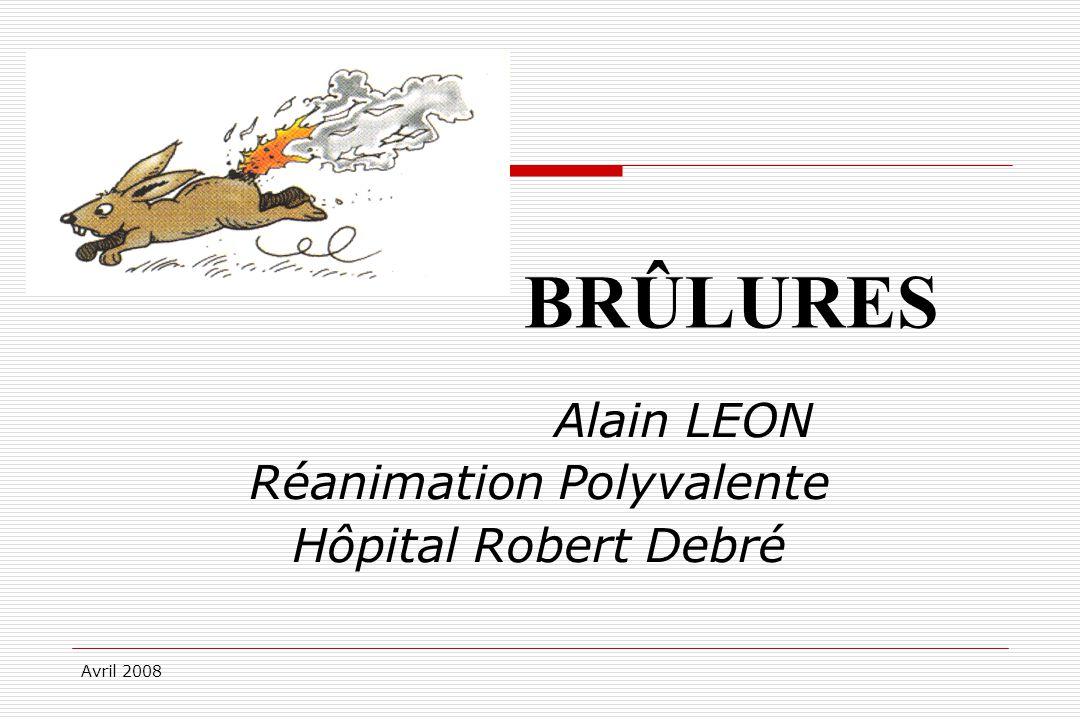 Avril 2008 Epidémiologie, I 150 000 à 200 000 victimes par an 40000 hospitalisations / an en France 3000 dans un centre spécialisé 21 centres de brûlés en France soit 335 lits.