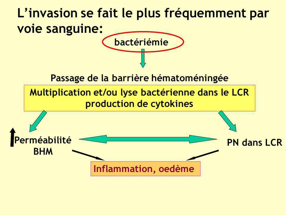 Linvasion se fait le plus fréquemment par voie sanguine: bactériémie Passage de la barrière hématoméningée Multiplication et/ou lyse bactérienne dans