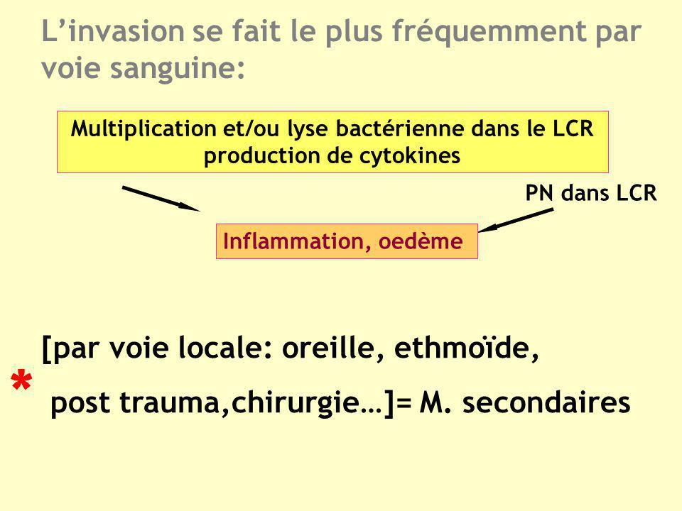 Linvasion se fait le plus fréquemment par voie sanguine: Multiplication et/ou lyse bactérienne dans le LCR production de cytokines PN dans LCR Inflamm