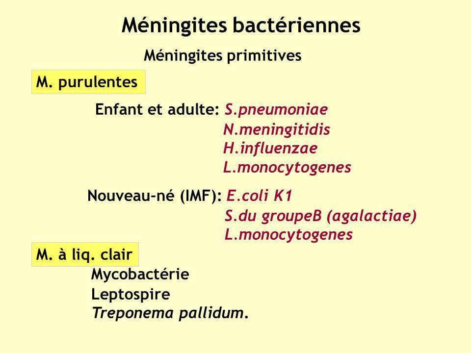 Méningites bactériennes Méningites primitives M. purulentes Mycobactérie Leptospire Treponema pallidum. M. à liq. clair Enfant et adulte: S.pneumoniae