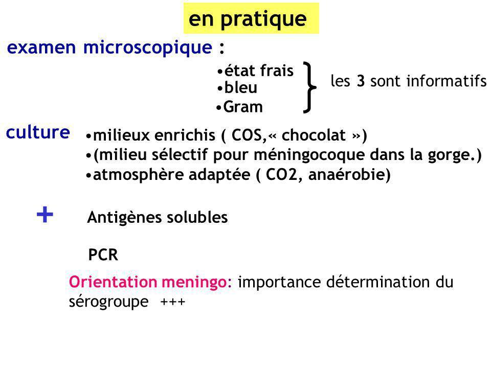 en pratique examen microscopique : bleu Gram état frais les 3 sont informatifs culture milieux enrichis ( COS,« chocolat ») (milieu sélectif pour méni
