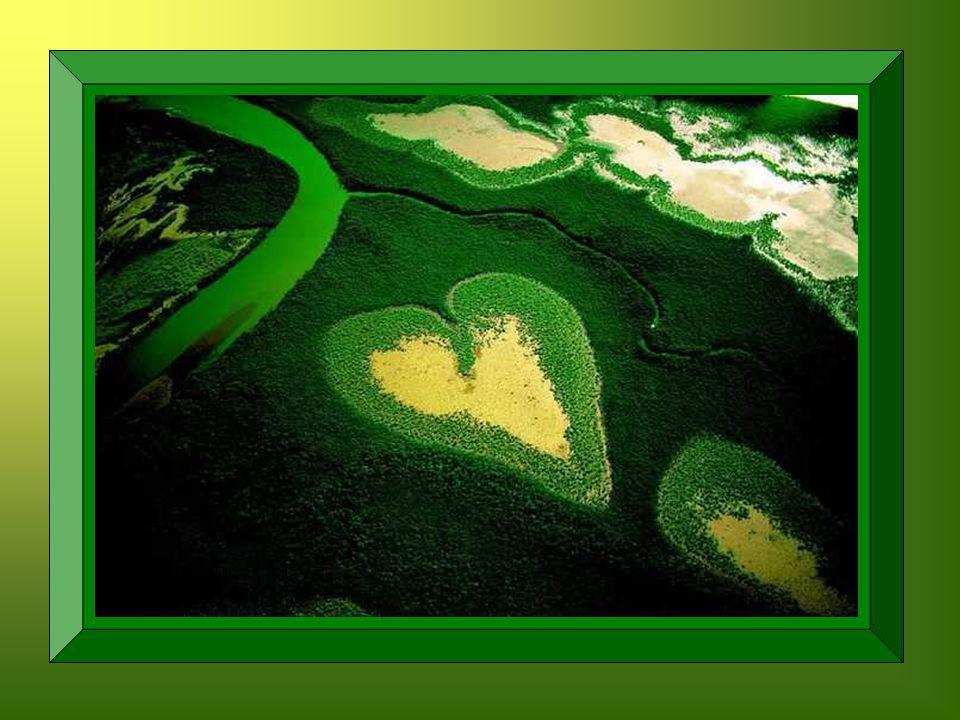 Alors ?... Vous avez trouvé ? cette chose merveilleuse, élan de notre cœur, reflet de la joie de Dieu, cest le Sourire!