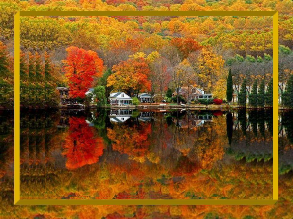 Cest marcher dans une forêt à lautomne et rester sourd à la chanson des feuilles qui crissent sous nos pieds ;