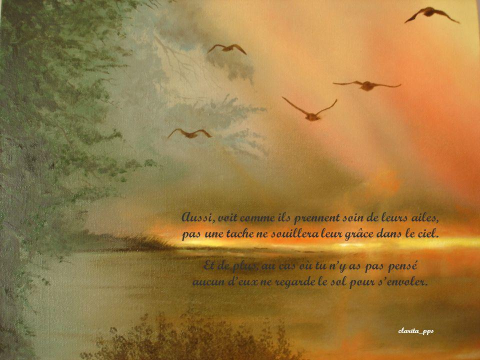 Si tu doutes, contemple la vie dans la nature, les oiseaux savent bien quen haut, lair est plus pur.
