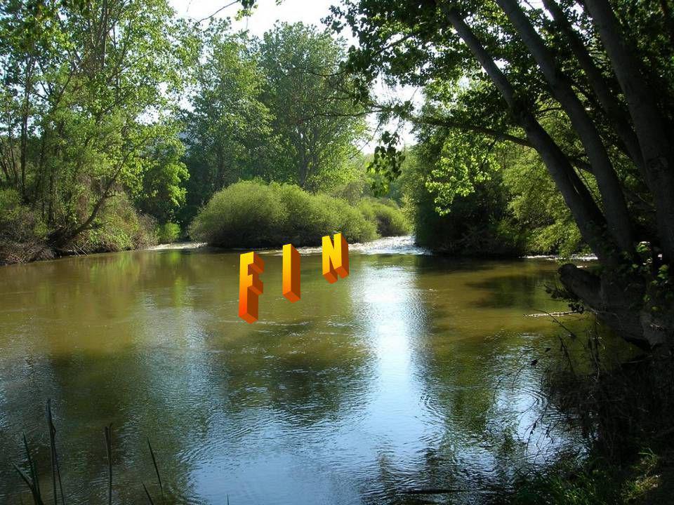 Photos personnelles : Guy Montage, réalisation Mondoune Musique : La Regazza Fausto Papetti Fait le 12 août 2012 mondoune@yahoo.fr