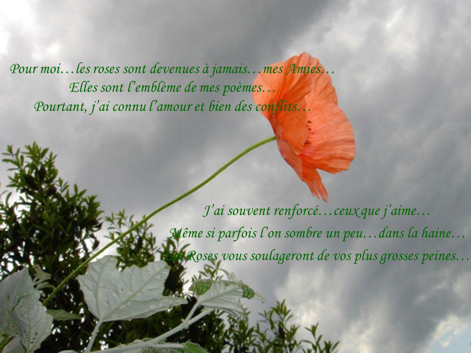 Pour moi…les roses sont devenues à jamais…mes Amies… Elles sont lemblème de mes poèmes… Pourtant, jai connu lamour et bien des conflits… Jai souvent renforcé…ceux que jaime… Même si parfois lon sombre un peu…dans la haine… Les Roses vous soulageront de vos plus grosses peines…