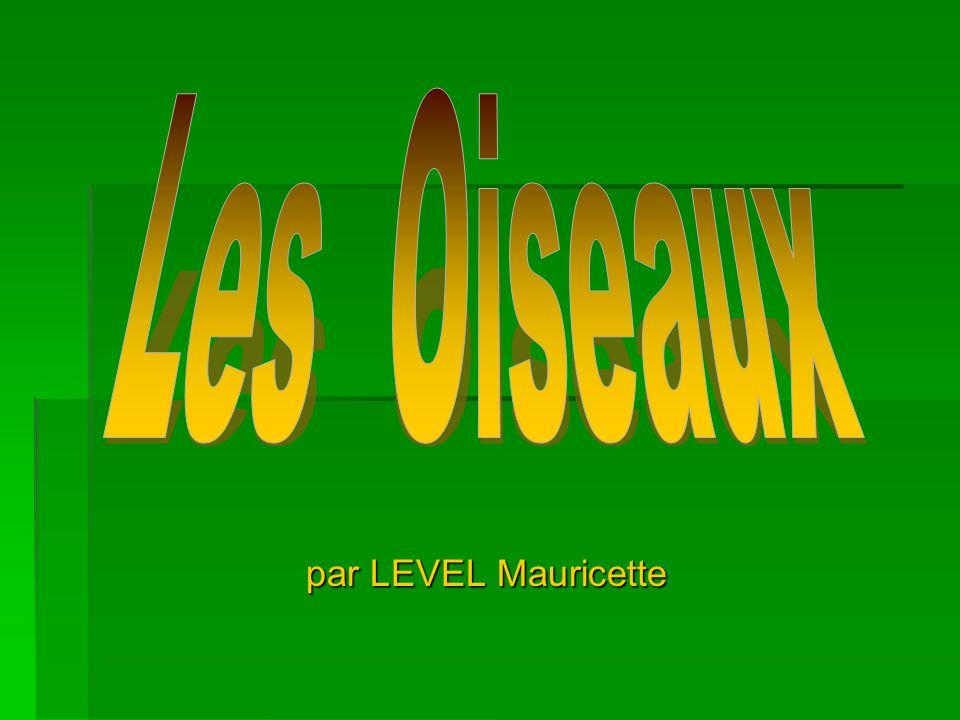 par LEVEL Mauricette