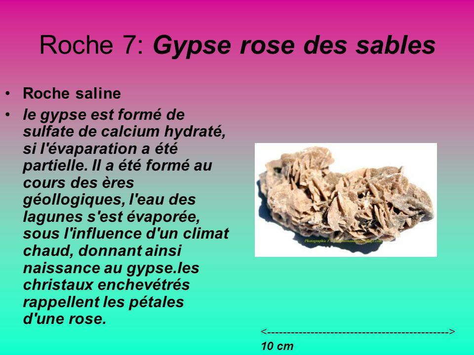 Roche 7: Gypse rose des sables Roche saline le gypse est formé de sulfate de calcium hydraté, si l évaparation a été partielle.