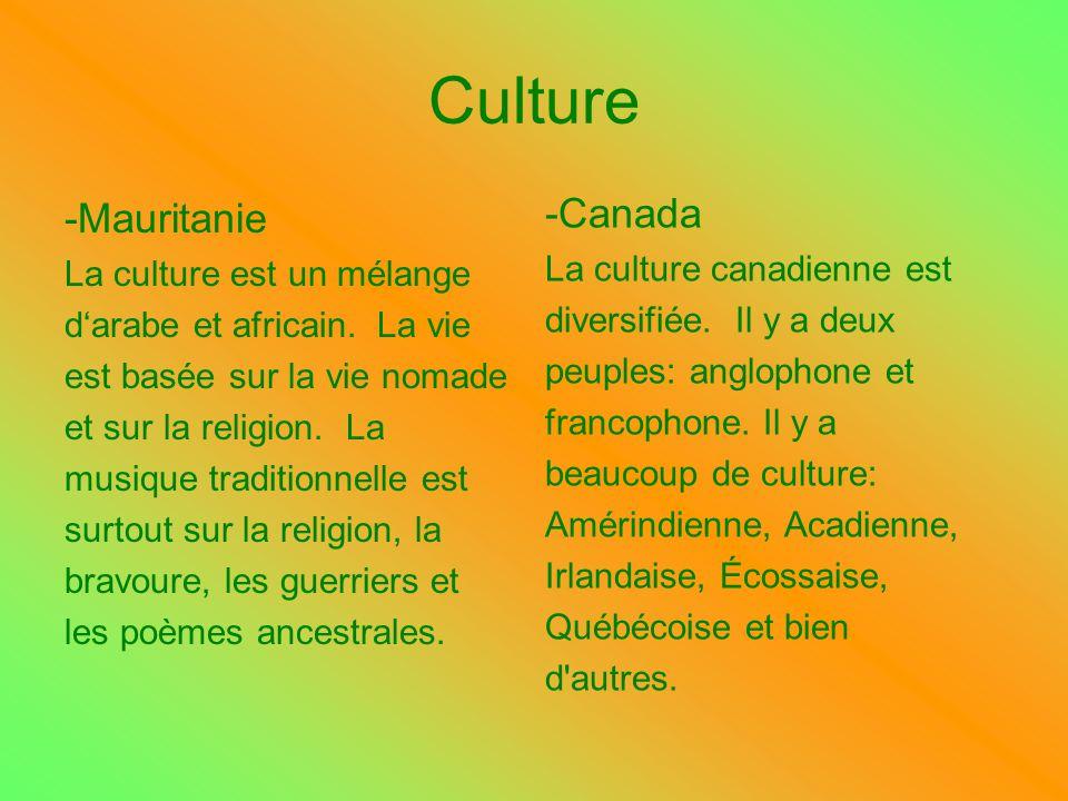 Culture -Mauritanie La culture est un mélange darabe et africain. La vie est basée sur la vie nomade et sur la religion. La musique traditionnelle est