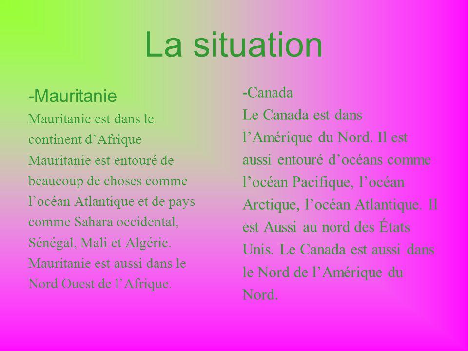 La situation -Mauritanie Mauritanie est dans le continent dAfrique Mauritanie est entouré de beaucoup de choses comme locéan Atlantique et de pays com