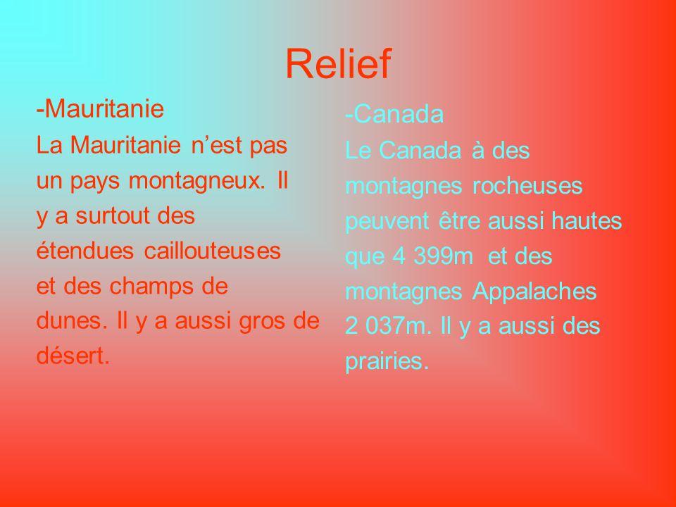 Relief -Mauritanie La Mauritanie nest pas un pays montagneux. Il y a surtout des étendues caillouteuses et des champs de dunes. Il y a aussi gros de d