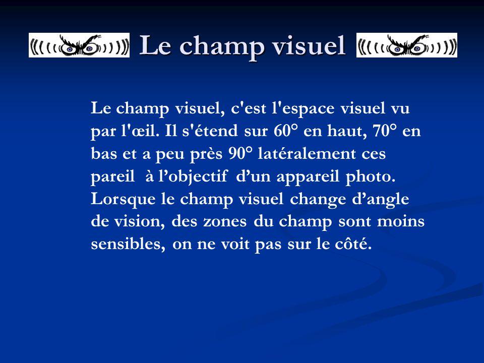 Le champ visuel Le champ visuel, c'est l'espace visuel vu par l'œil. Il s'étend sur 60° en haut, 70° en bas et a peu près 90° latéralement ces pareil