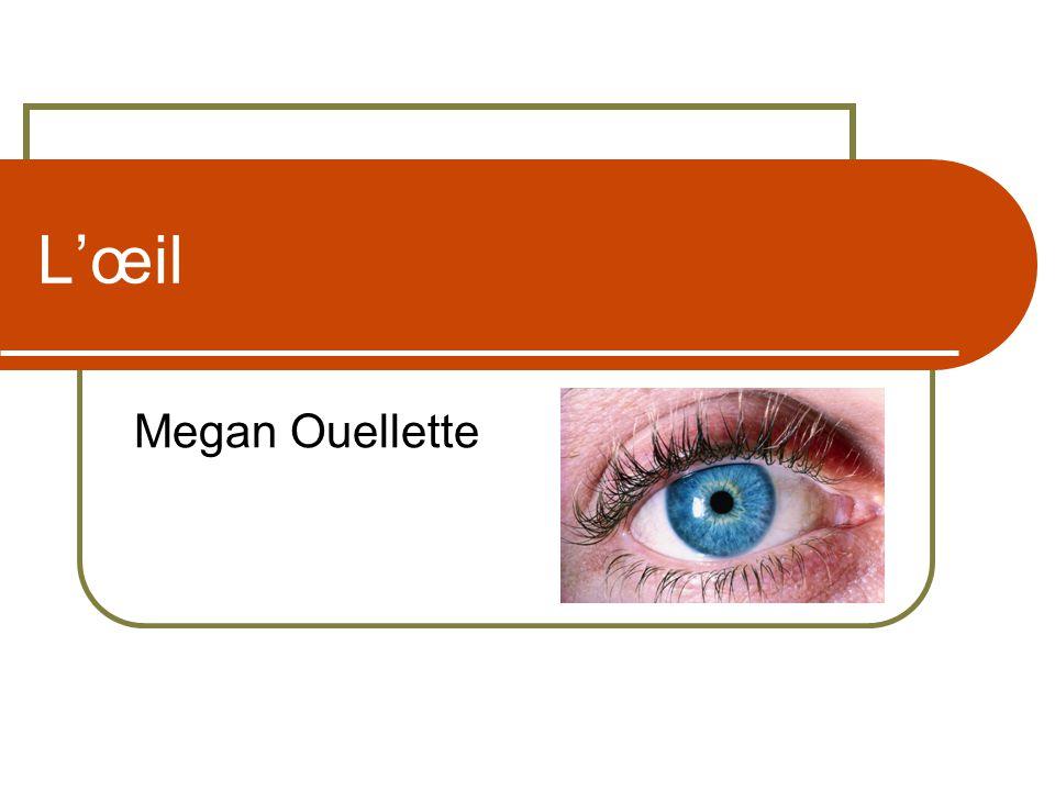 Lœil Megan Ouellette