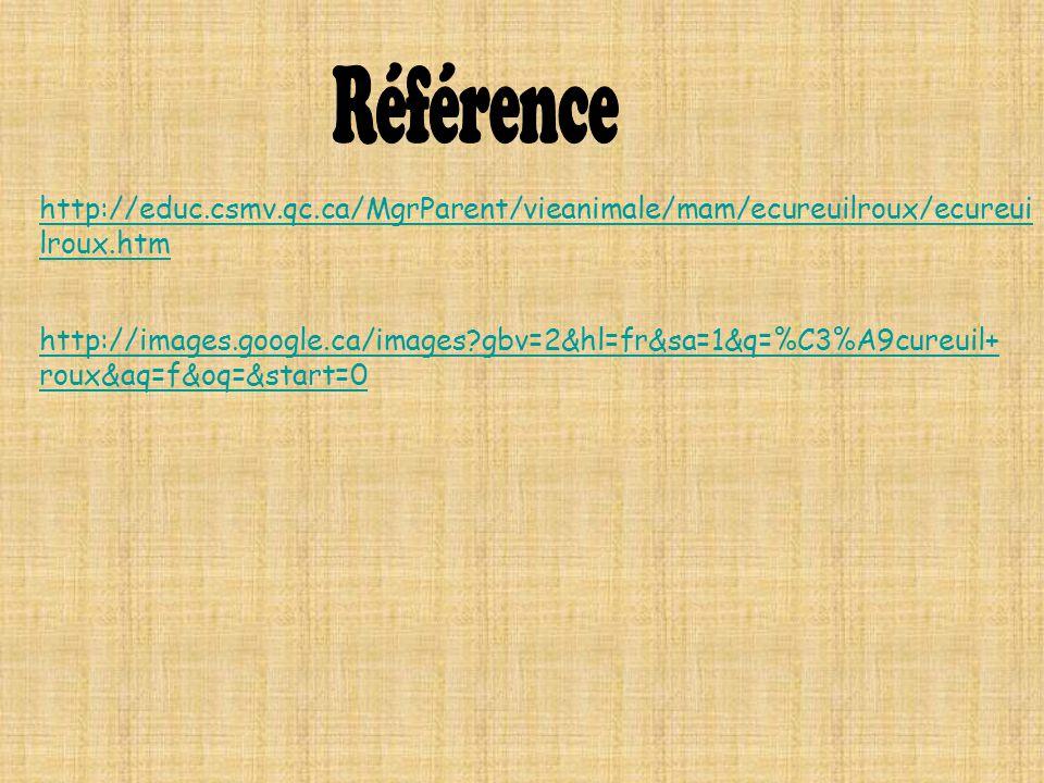 http://educ.csmv.qc.ca/MgrParent/vieanimale/mam/ecureuilroux/ecureui lroux.htm http://images.google.ca/images?gbv=2&hl=fr&sa=1&q=%C3%A9cureuil+ roux&a