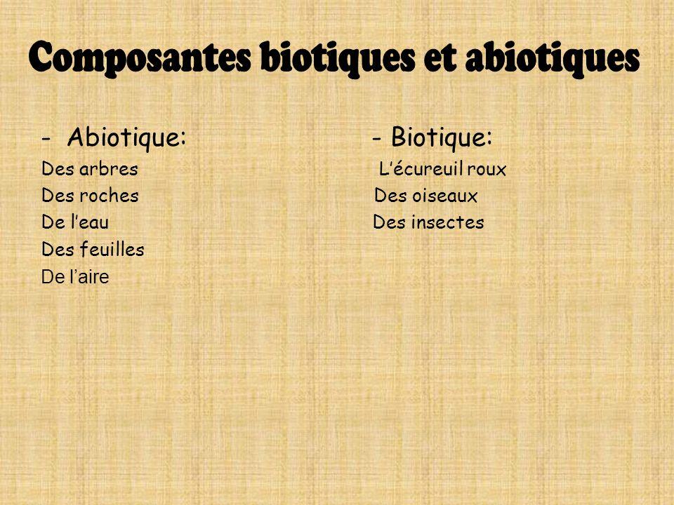 -Abiotique: - Biotique: Des arbres Lécureuil roux Des roches Des oiseaux De leau Des insectes Des feuilles De laire