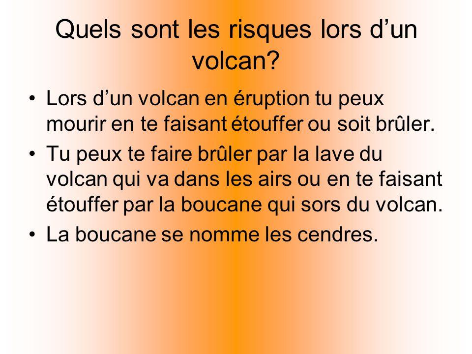 Quels sont les risques lors dun volcan? Lors dun volcan en éruption tu peux mourir en te faisant étouffer ou soit brûler. Tu peux te faire brûler par