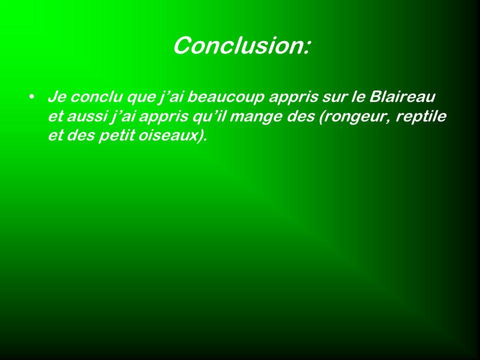 Conclusion: Je conclu que jai beaucoup appris sur le Blaireau et aussi jai appris quil mange des (rongeur, reptile et des petit oiseaux).