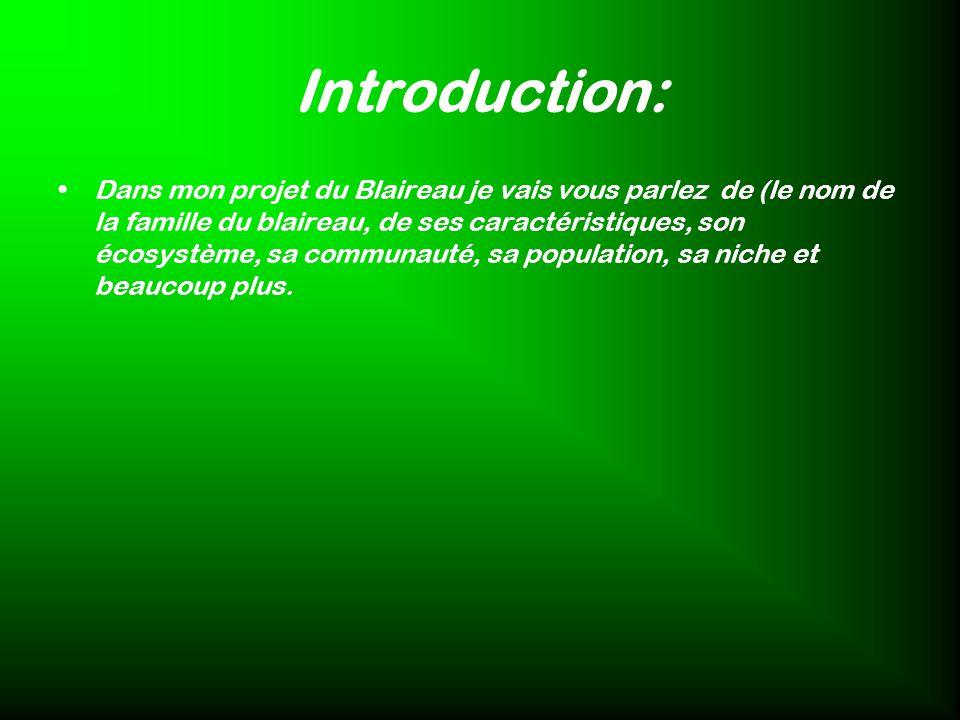Introduction: Dans mon projet du Blaireau je vais vous parlez de (le nom de la famille du blaireau, de ses caractéristiques, son écosystème, sa commun