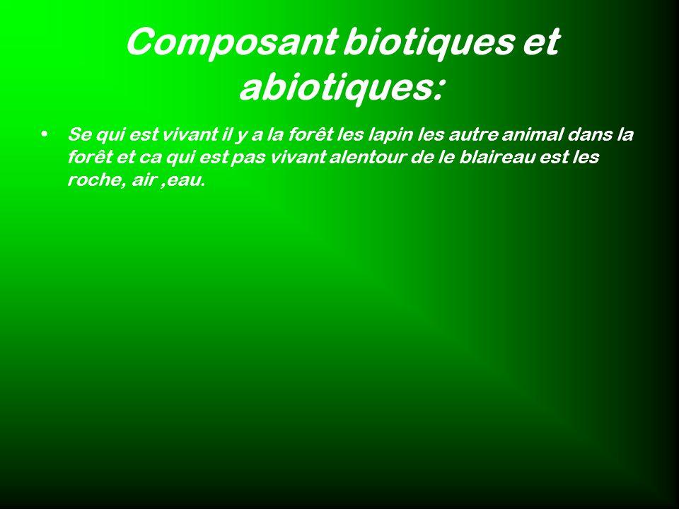 Composant biotiques et abiotiques: Se qui est vivant il y a la forêt les lapin les autre animal dans la forêt et ca qui est pas vivant alentour de le