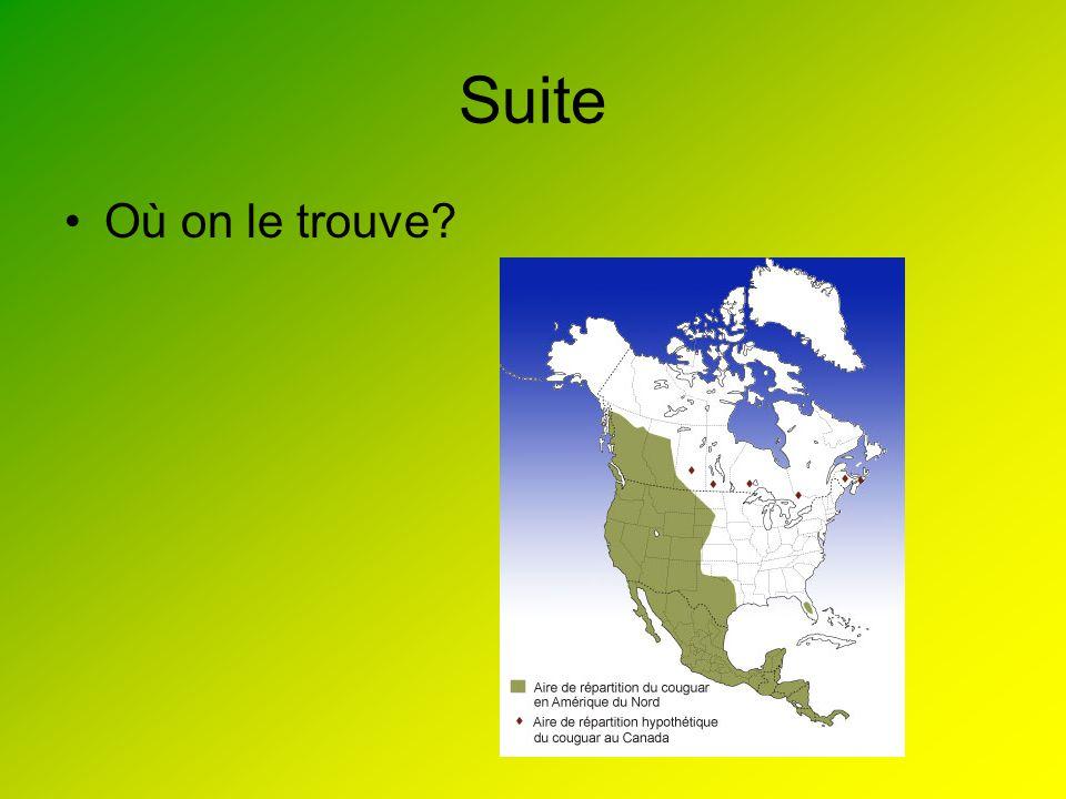 Biotique et abiotique Le milieu abiotique du couguar est de la terre, laire et roche.