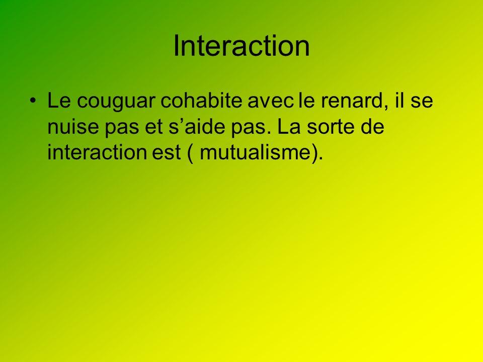 Interaction Le couguar cohabite avec le renard, il se nuise pas et saide pas. La sorte de interaction est ( mutualisme).