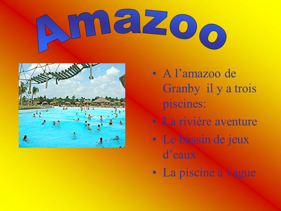 A lamazoo de Granby il y a trois piscines: La rivière aventure Le bassin de jeux deaux La piscine a vague