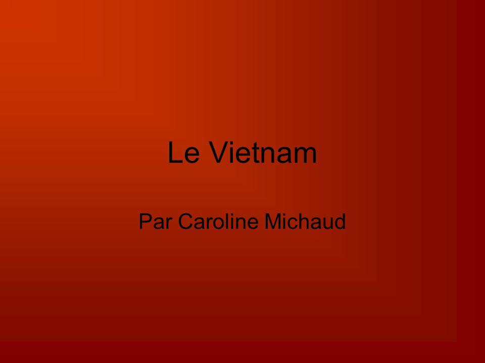 Le Vietnam Par Caroline Michaud