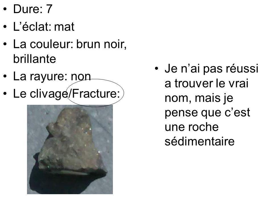 Je nai pas réussi a trouver le vrai nom, mais je pense que cest une roche sédimentaire Dure: 7 Léclat: mat La couleur: brun noir, brillante La rayure: