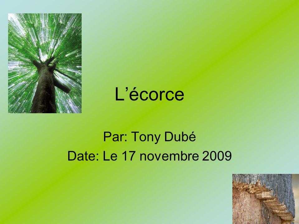 Lécorce Par: Tony Dubé Date: Le 17 novembre 2009