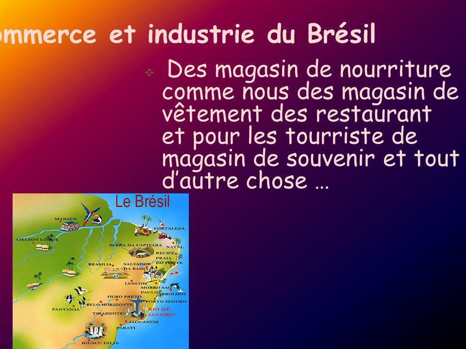 Commerce et industrie du Brésil Des magasin de nourriture comme nous des magasin de vêtement des restaurant et pour les tourriste de magasin de souven