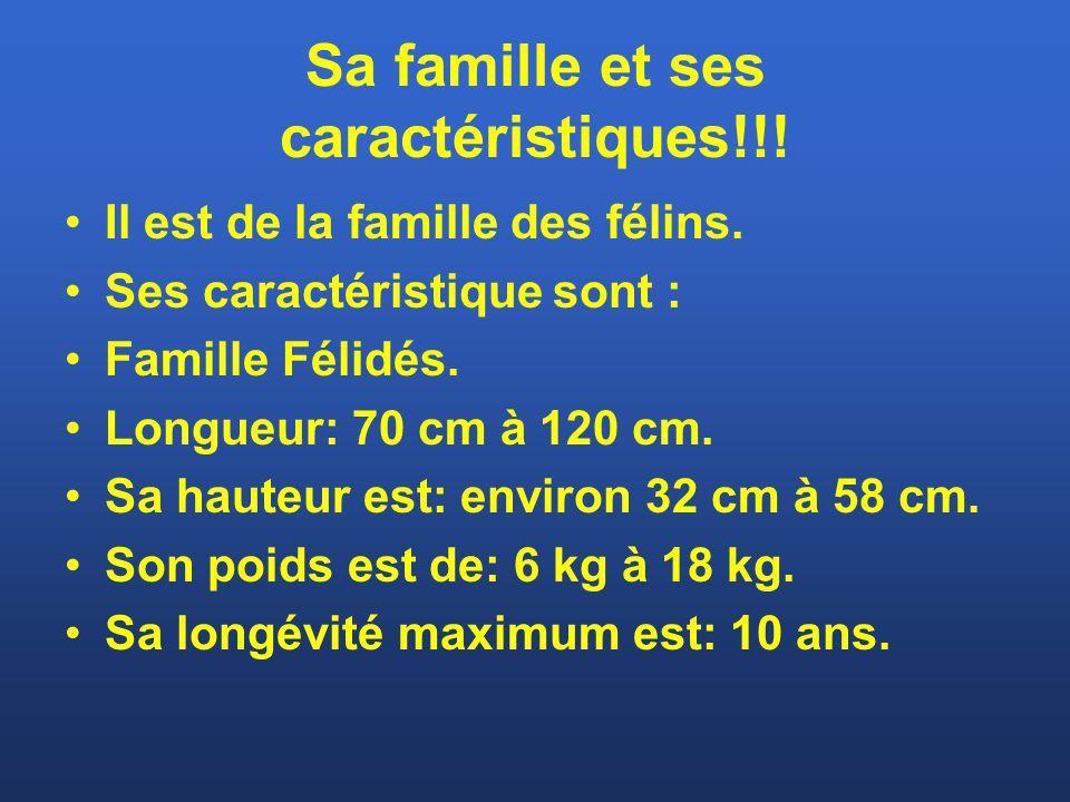 Sa famille et ses caractéristiques!!! Il est de la famille des félins. Ses caractéristique sont : Famille Félidés. Longueur: 70 cm à 120 cm. Sa hauteu