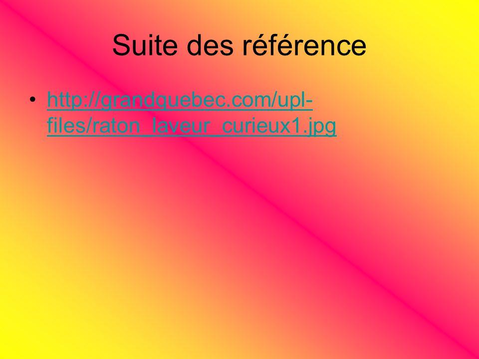 Suite des référence http://grandquebec.com/upl- files/raton_laveur_curieux1.jpghttp://grandquebec.com/upl- files/raton_laveur_curieux1.jpg