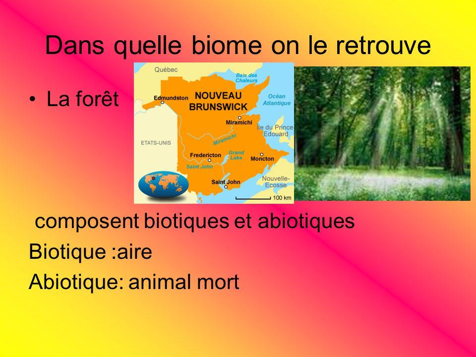 Dans quelle biome on le retrouve La forêt composent biotiques et abiotiques Biotique :aire Abiotique: animal mort