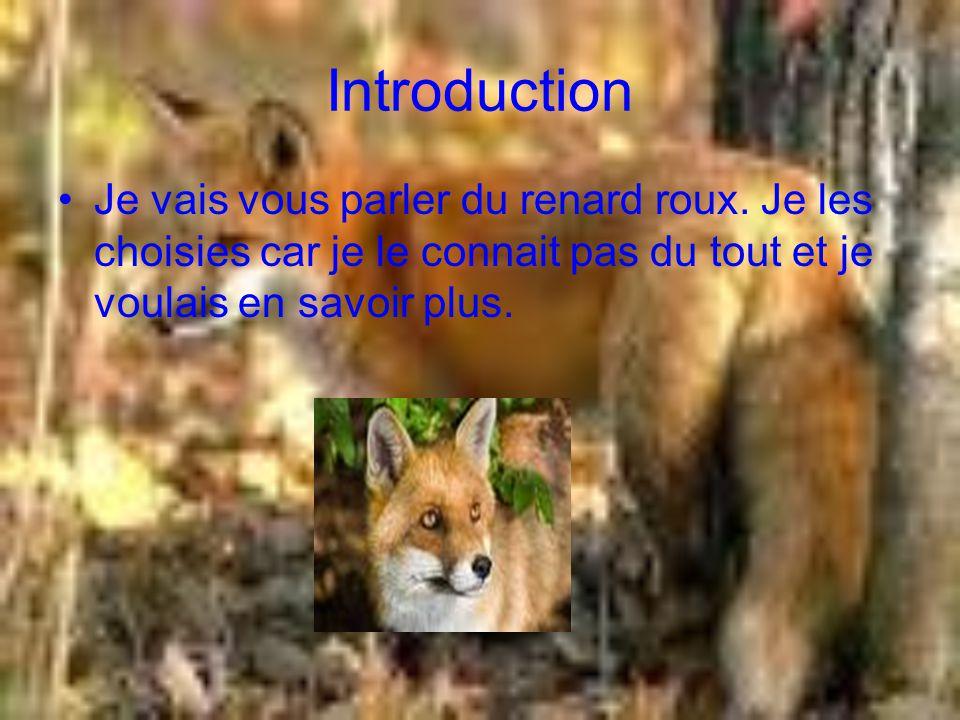 Sa famille et caractéristique La famille du renard est les canidés.