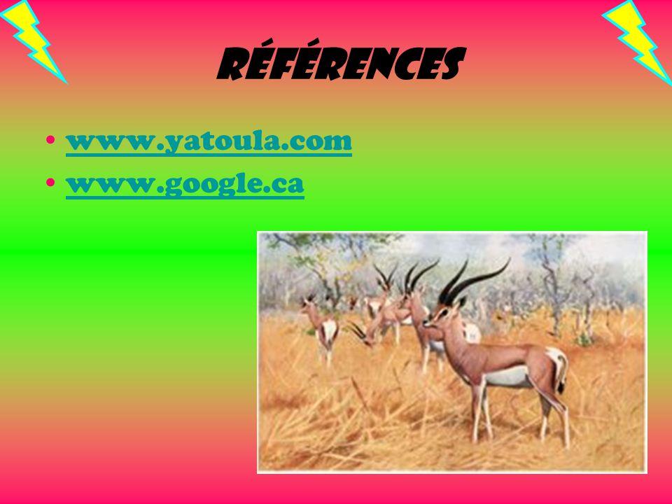 Références www.yatoula.com www.google.ca