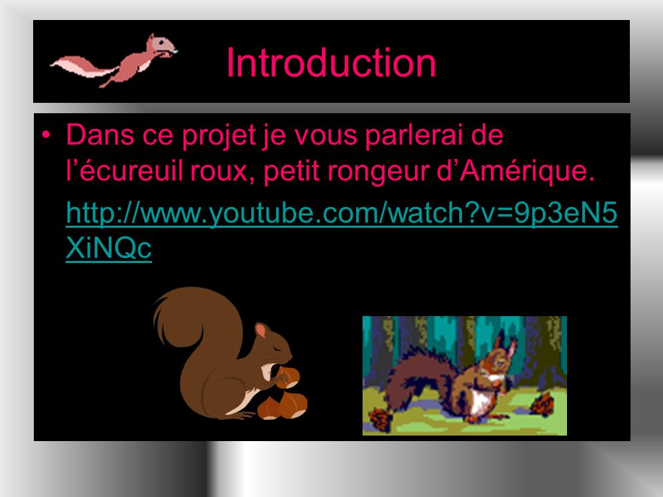 Introduction Dans ce projet je vous parlerai de lécureuil roux, petit rongeur dAmérique. http://www.youtube.com/watch?v=9p3eN5 XiNQchttp://www.youtube