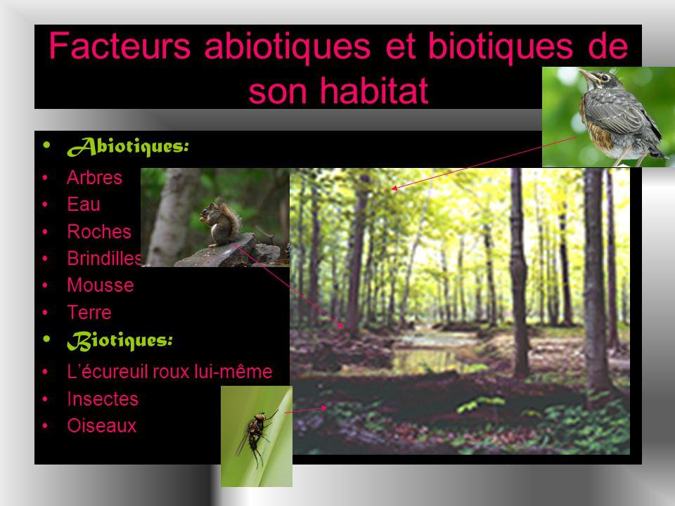 Facteurs abiotiques et biotiques de son habitat Abiotiques: Arbres Eau Roches Brindilles Mousse Terre Biotiques: Lécureuil roux lui-même Insectes Oiseaux