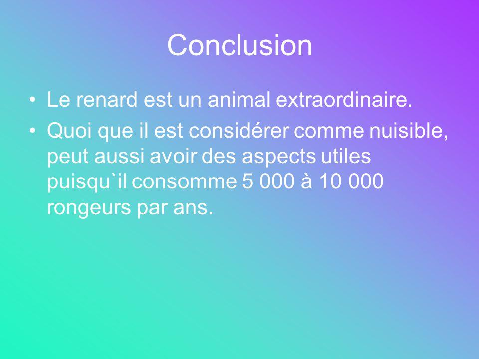 Conclusion Le renard est un animal extraordinaire. Quoi que il est considérer comme nuisible, peut aussi avoir des aspects utiles puisqu`il consomme 5